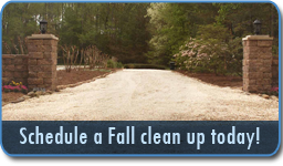 Schedule a Fall clean up today!