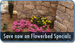Save now on Flowerbed Specials